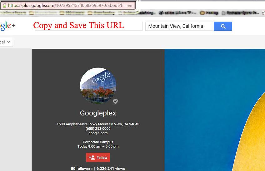 Find Google My Business Llisting URL